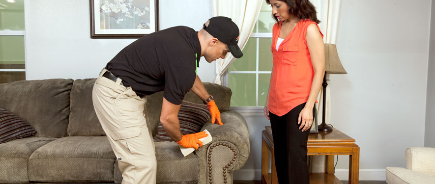 Jackson, MI carpet upholstery cleaning