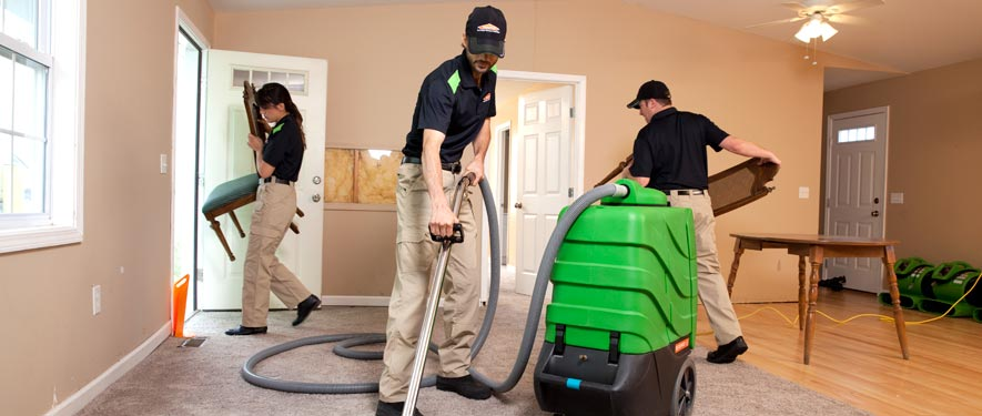 Jackson, MI cleaning services